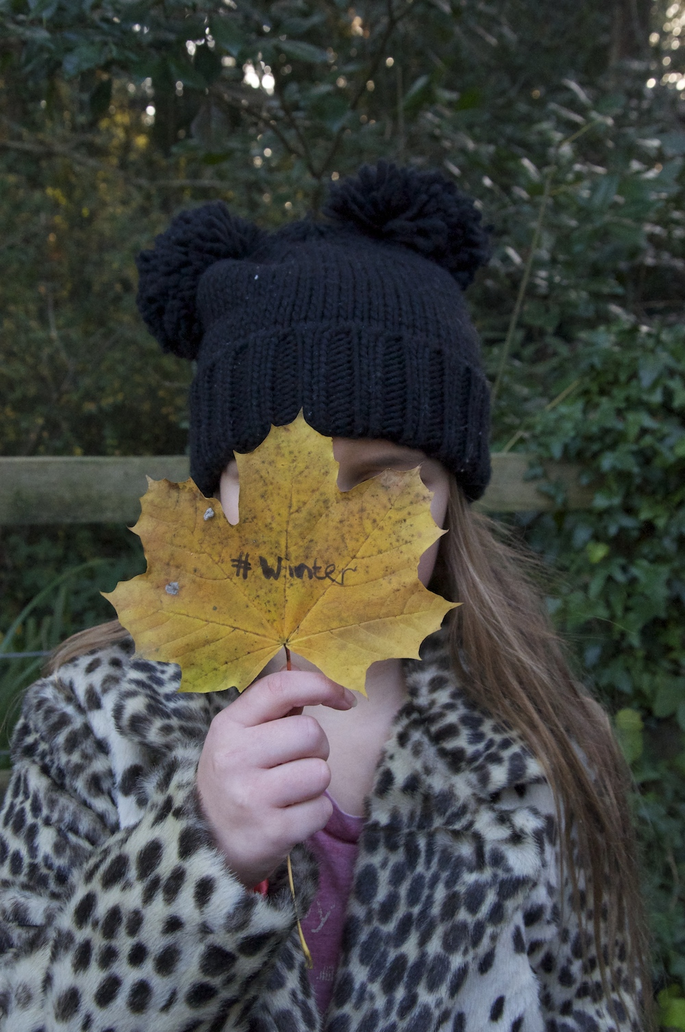 chloeuberkid_winter_leaf