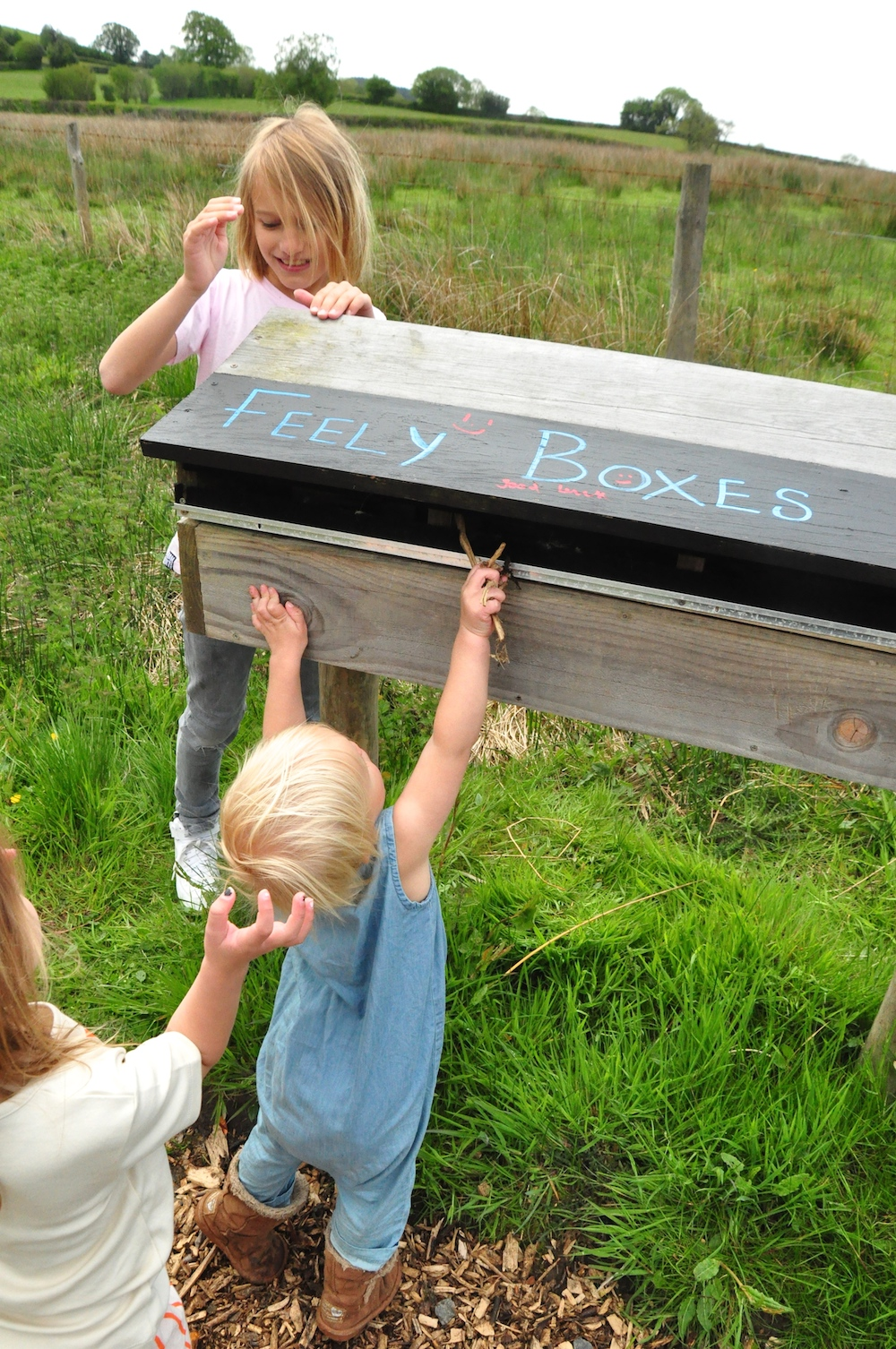 Cosy_under_canvas_glamping_feely_boxes