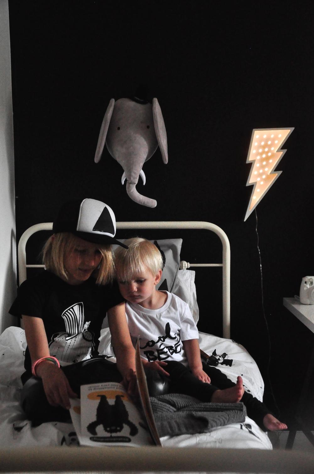 Fromage_lar_rue_maiko_mini_elephant_wall