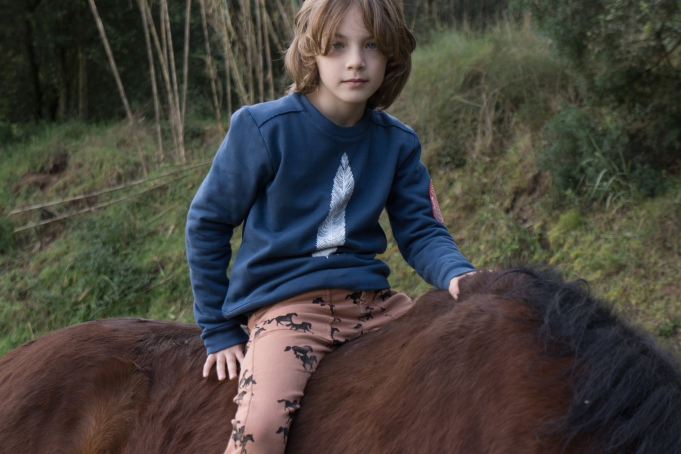 bobo_choses_aw15_horse_feather