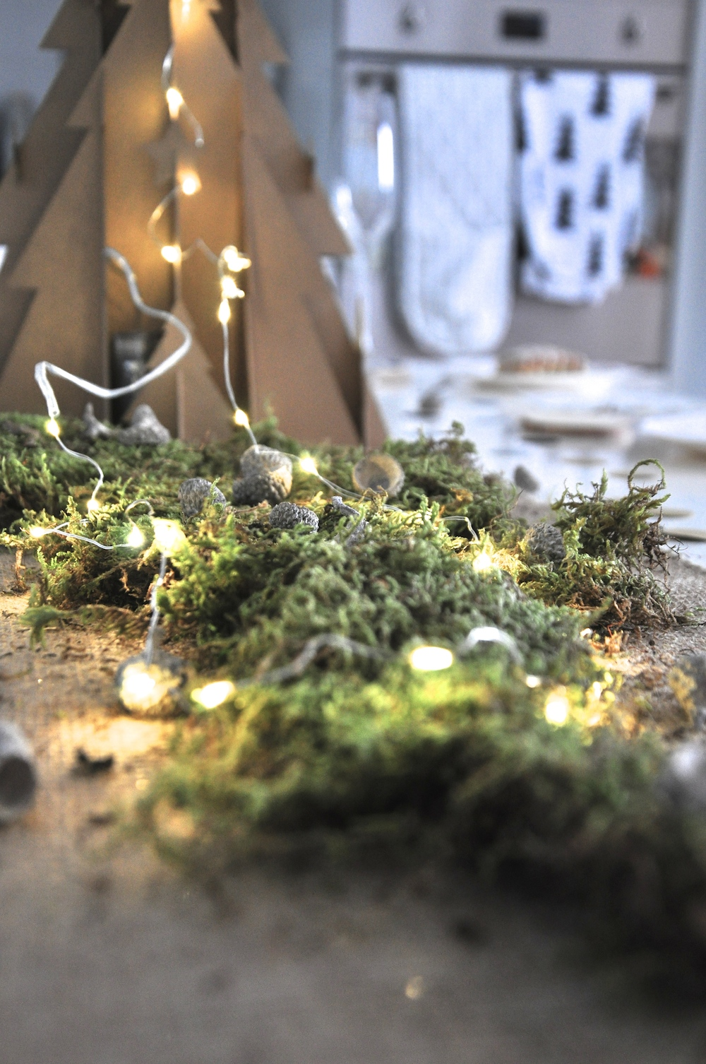 a_little_party_box_christmas_moss_lights
