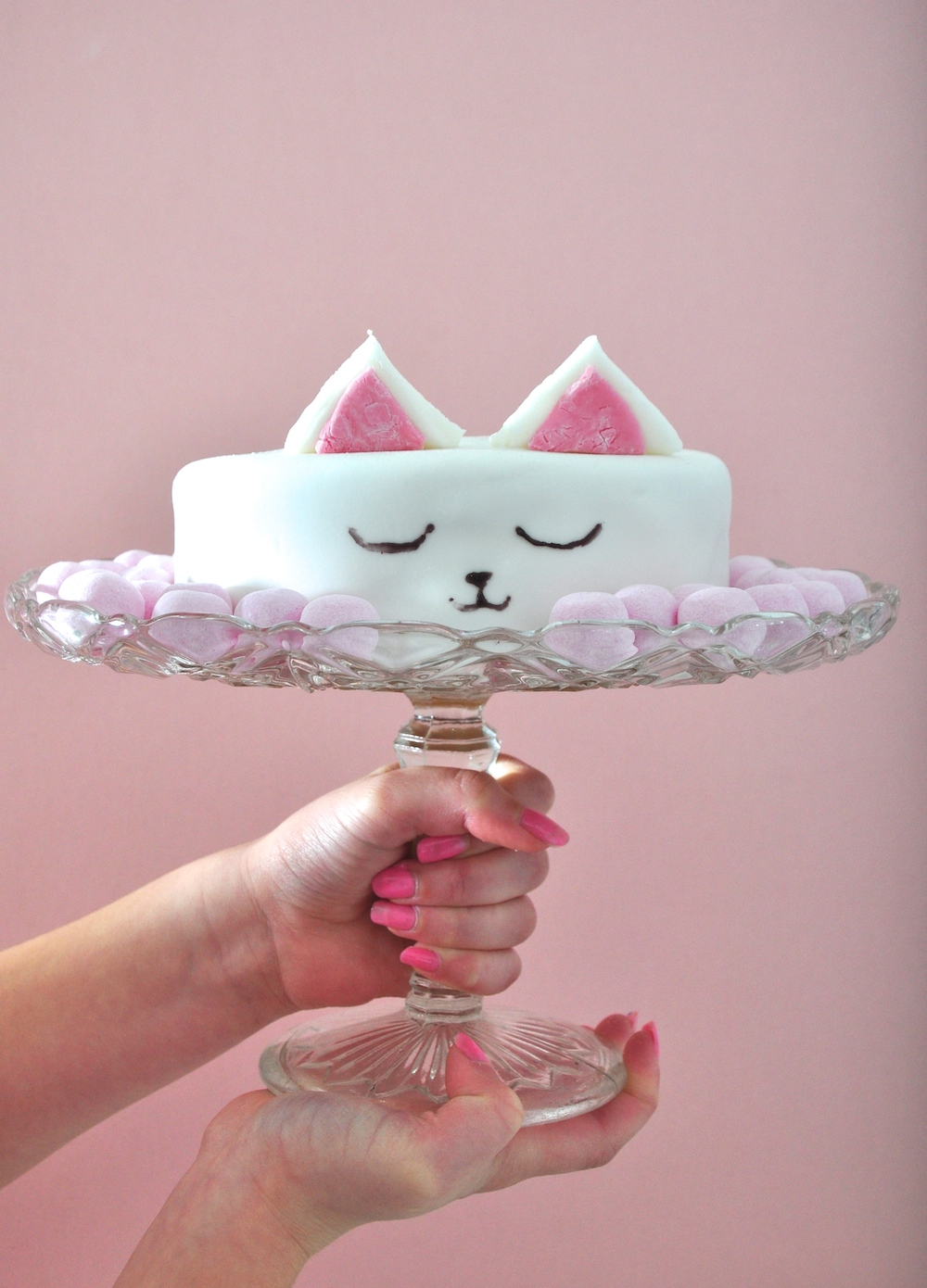 Cat And Dog Cake Ideas
