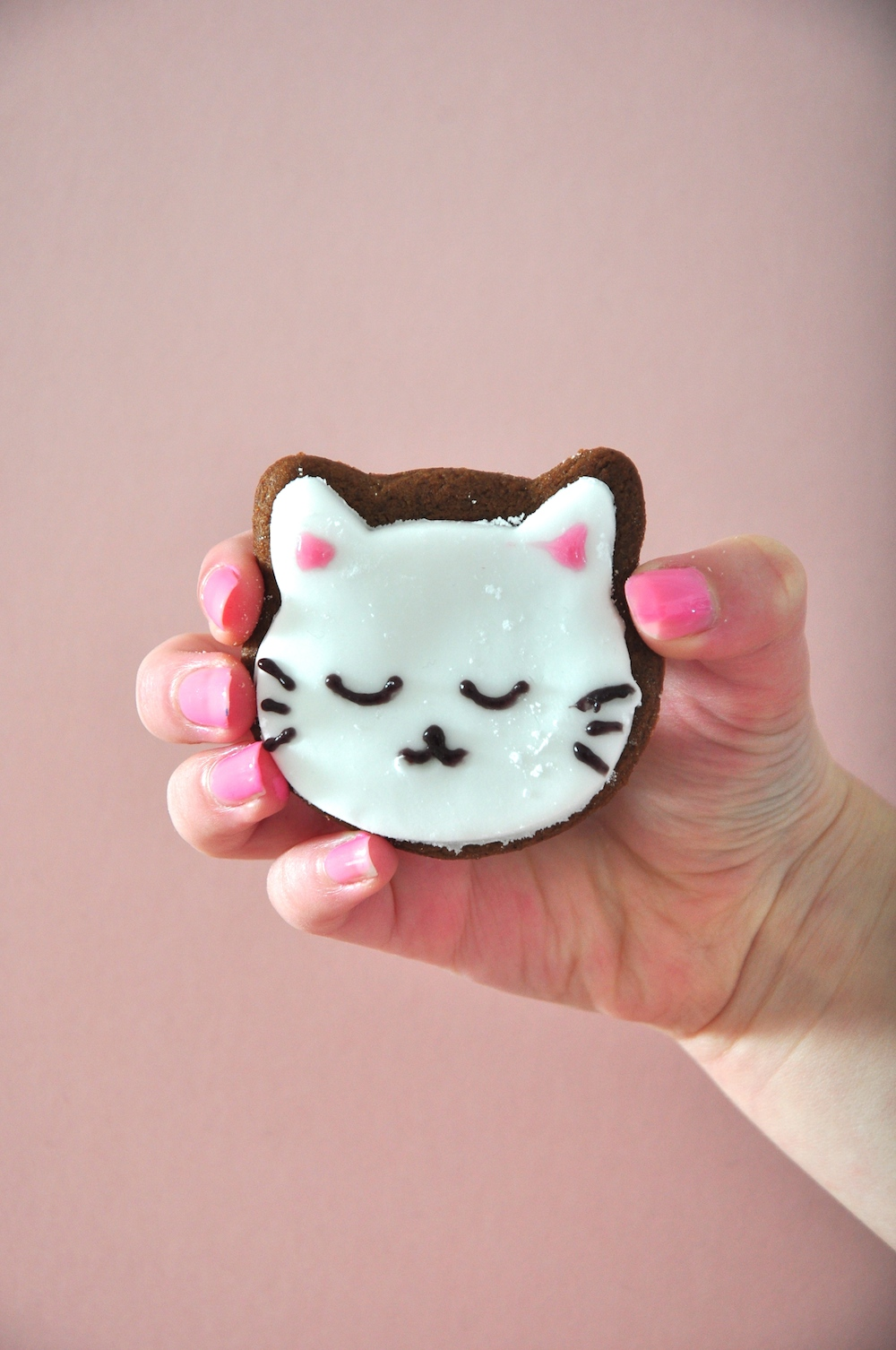 cat_kitten_biscuits_iced_birthday_party