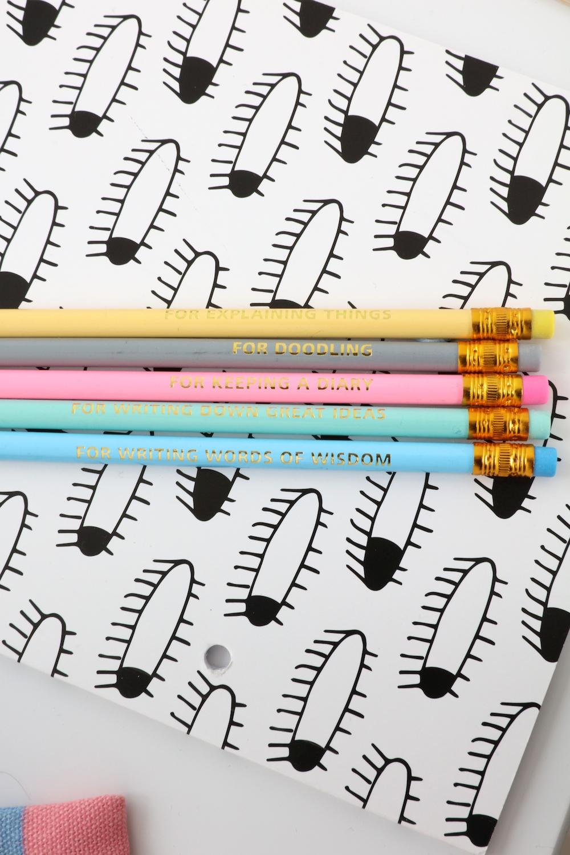 Tiger_stores_uk_pastel_pencils