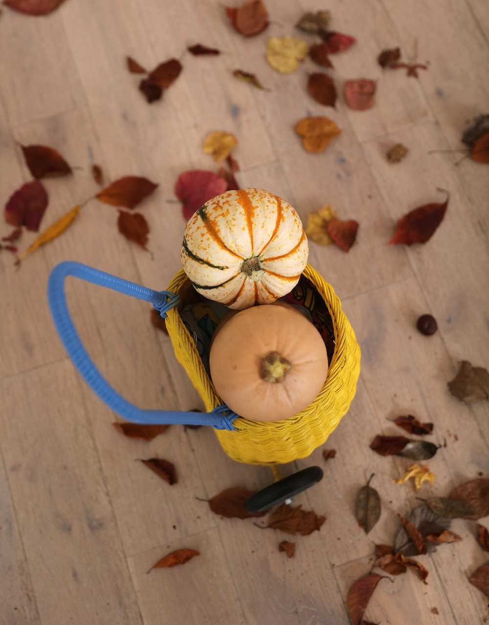 oliella_luggy_basket_pumpkins