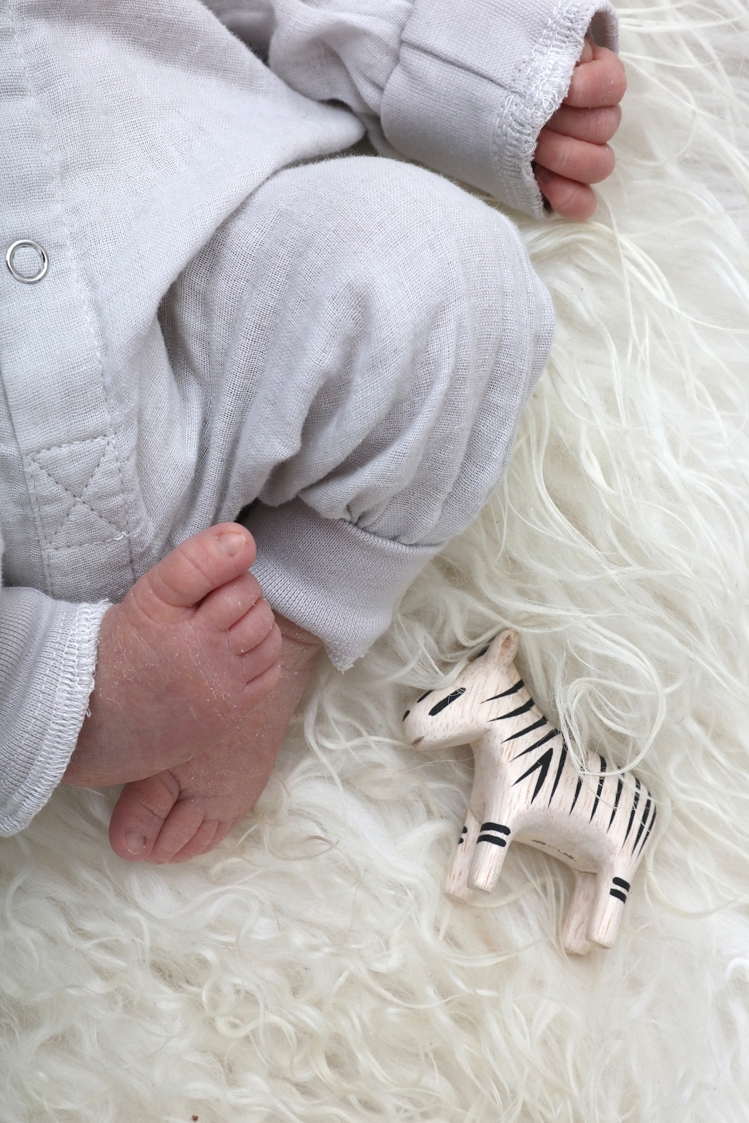 cissy_wears_toy_zebra