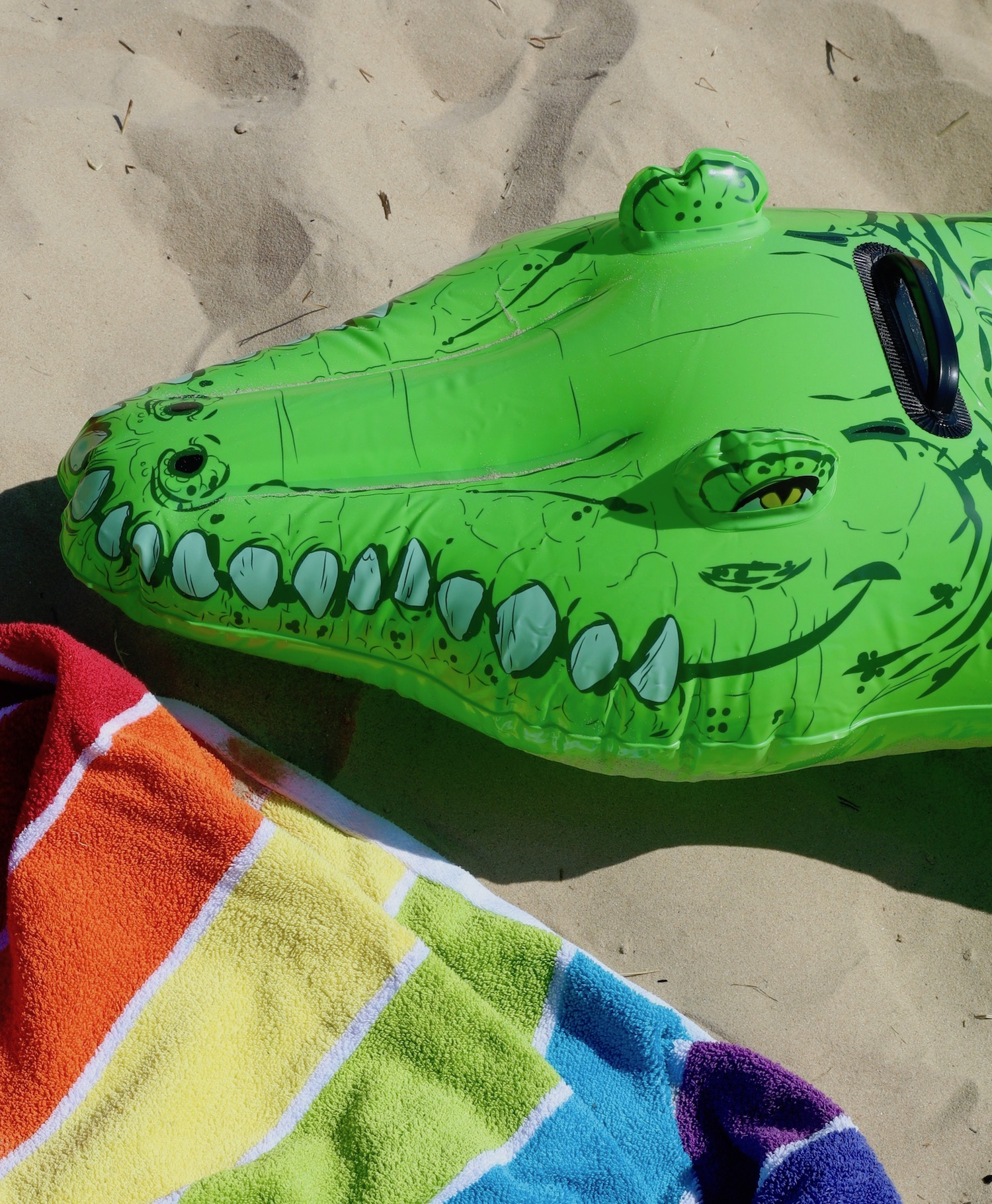 brach_crocodile