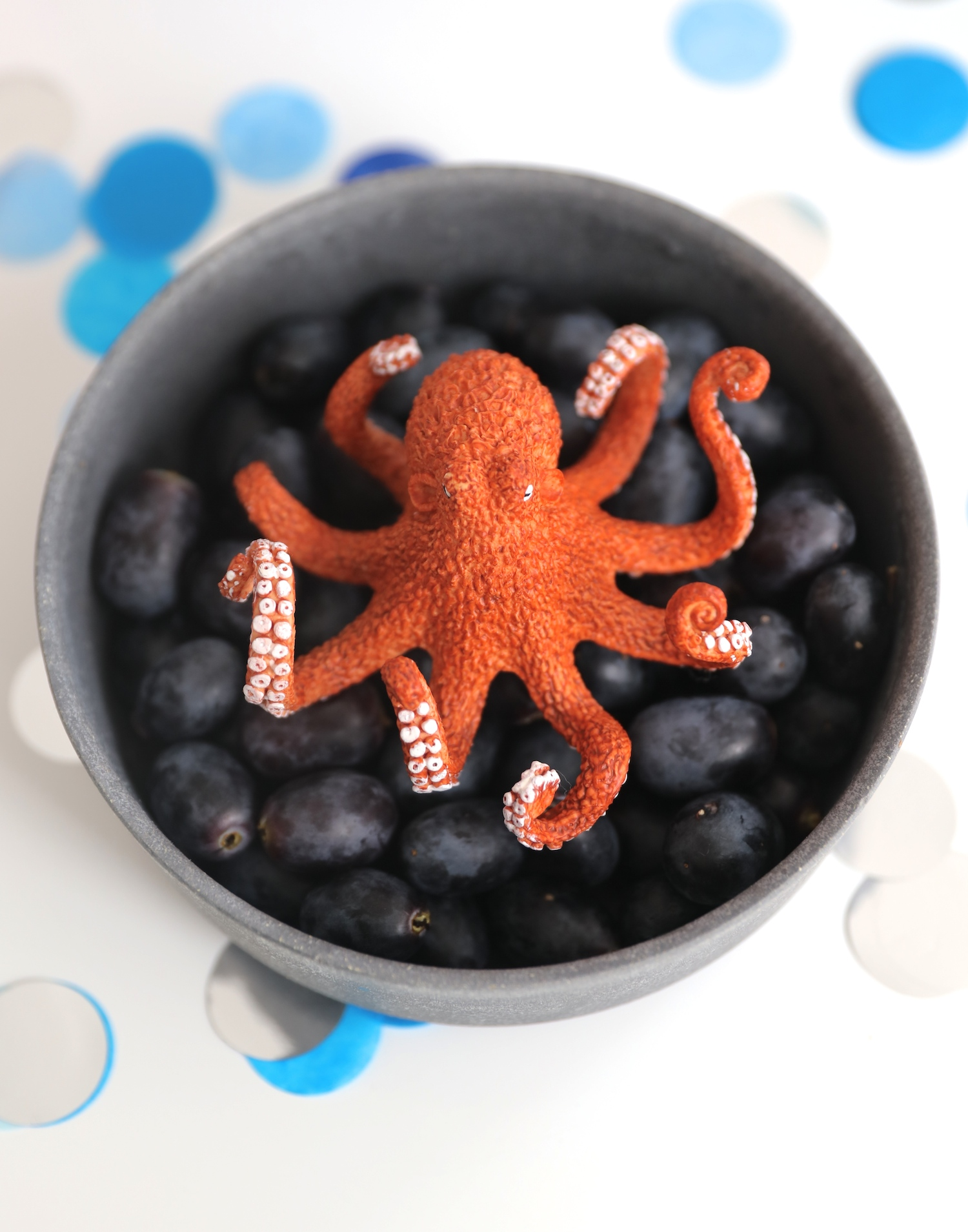 octopus_grapes_under_the_sea_party