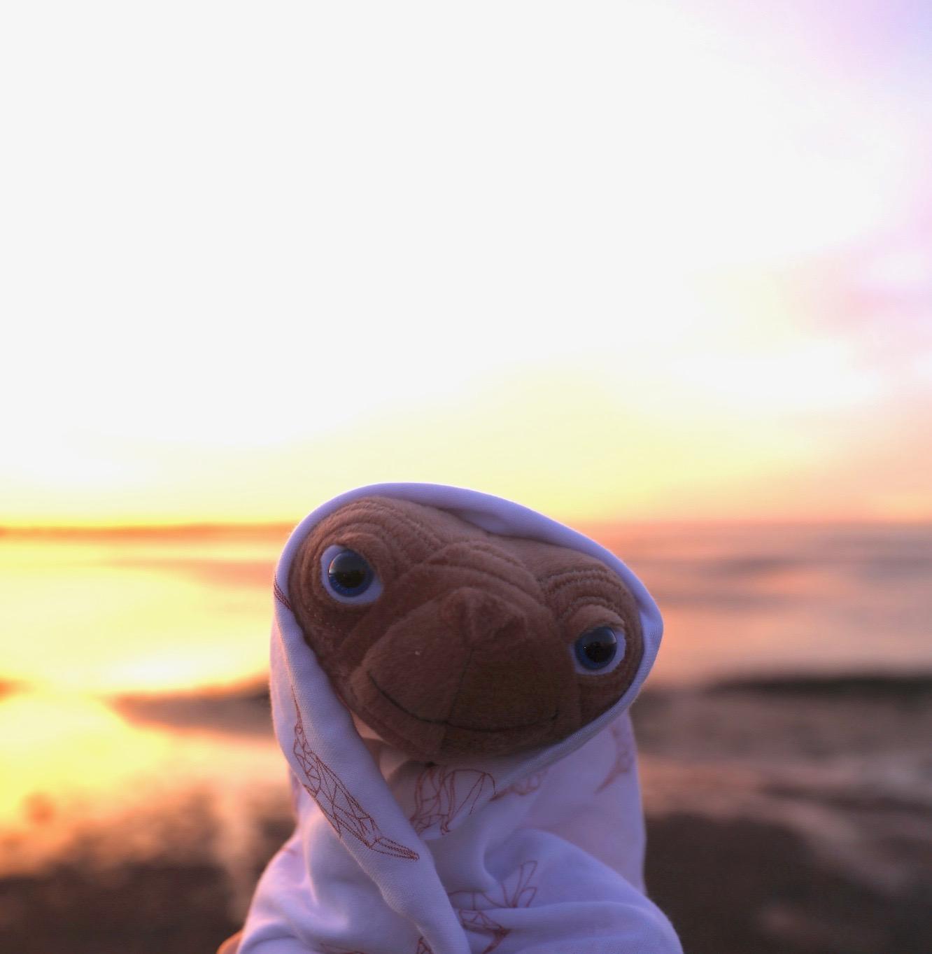 E.T._mama_desgins